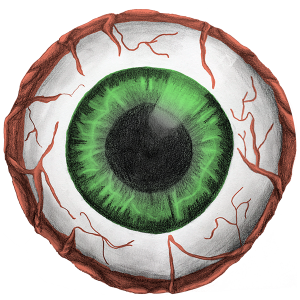 eye_600
